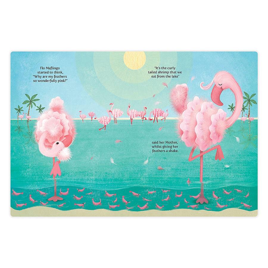 Flo Maflingo 'How Pink Can She Go' Book