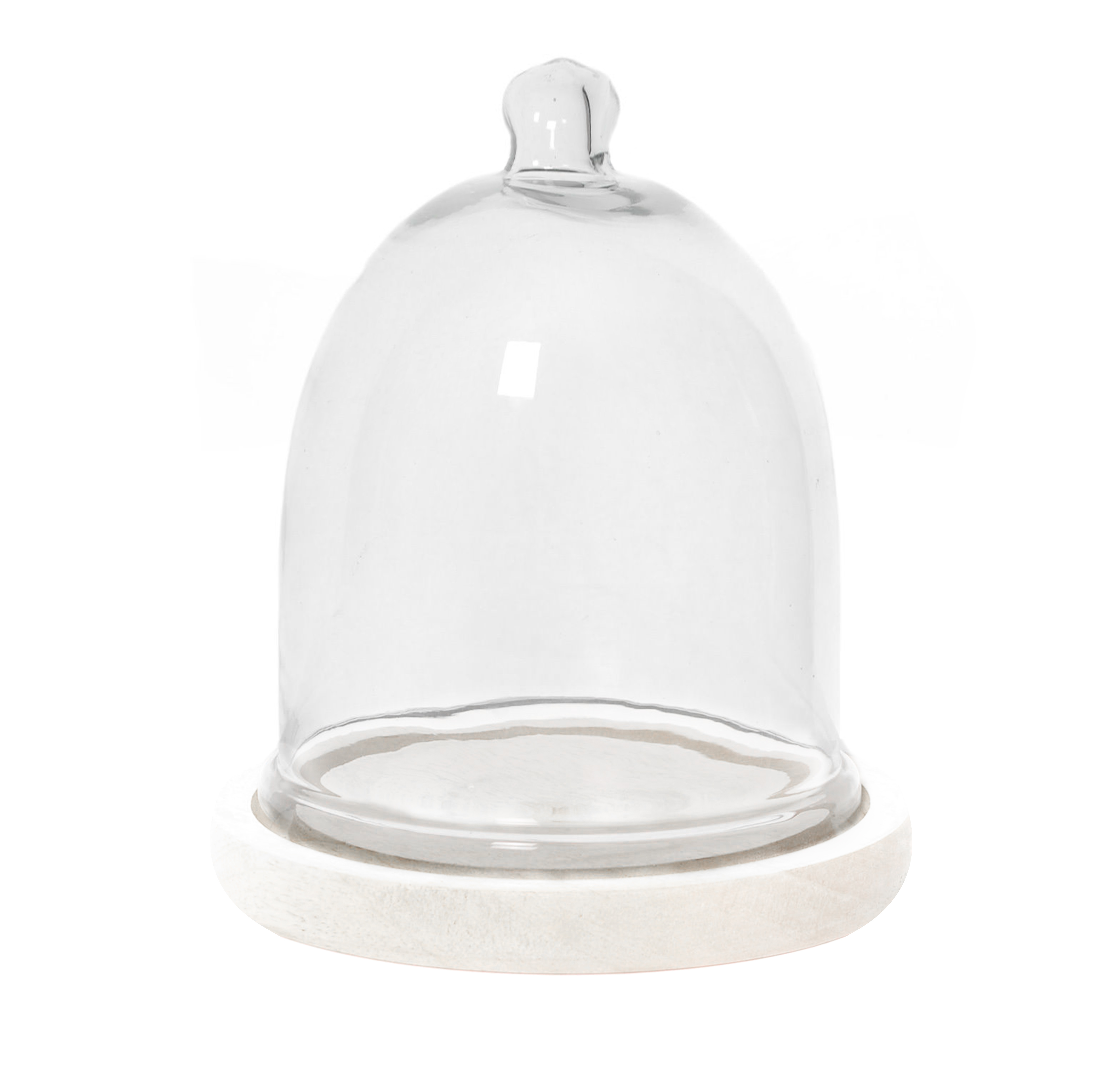 Sophie Allport, Glass Cloche Display Dome