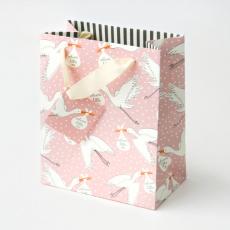 Caroline Gardner Stork Baby Girl Gift Bag